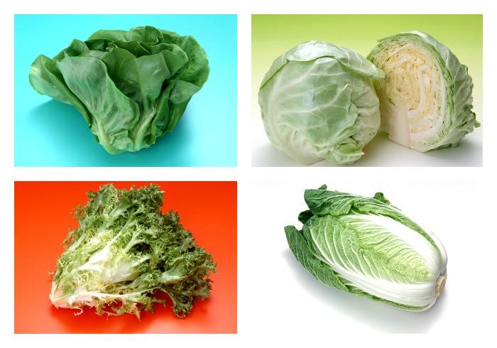 El abc de las lechugas - Diferentes ensaladas de lechuga ...